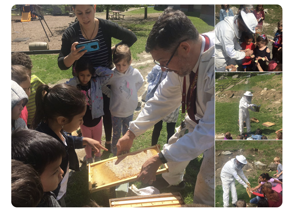 Beekeeping at FMES